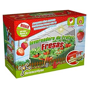 Science4you-Invernadero De Frutas-Fresas Juguete Educativo Y Científico, (5600849488332)